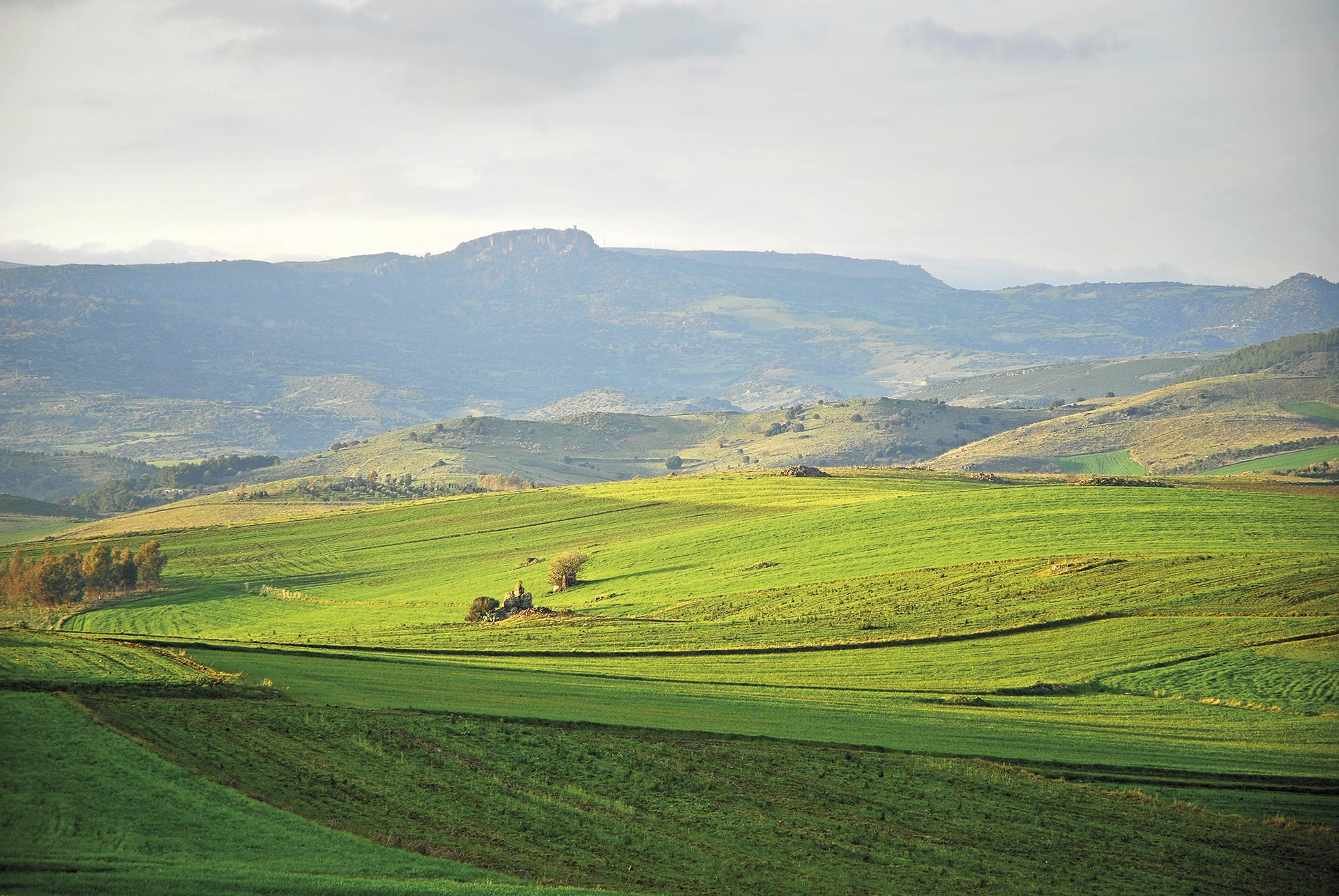 Museo i cavalieri delle colline l 39 architettura del for Piccole capanne di campagna